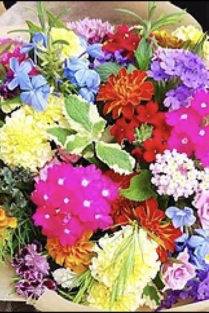 2021年4月24日(土)inダイテック栄|名古屋 VOL.110 セミナー 「食べれるお花 エディブルフラワーの最新情報 名古屋会場」
