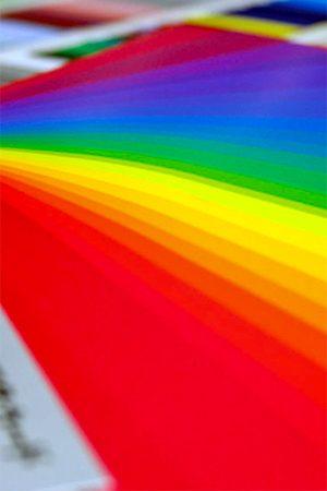 VOL.114 セミナー「花の魅力を最大限に。 流行りのカラーコーディネート&   パーソナルカラー診断」2021年9月11日(土)in国立オリンピック記念青少年総合センター|東京