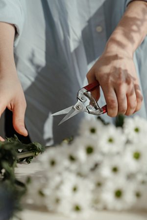 cutting-flowers